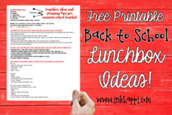 Lunchbox ideas and planning tips for awesome school lunches!